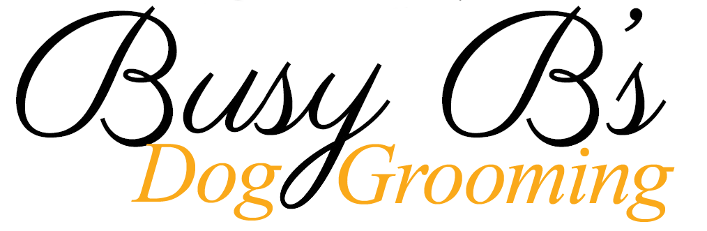 Busy B's Grooming